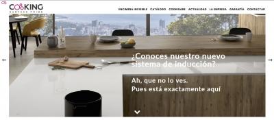 Diseño web para empresa de Encimeras de Inducción