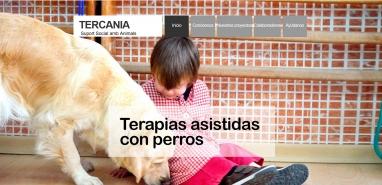 Diseño web para empresa de tratamientos con perros